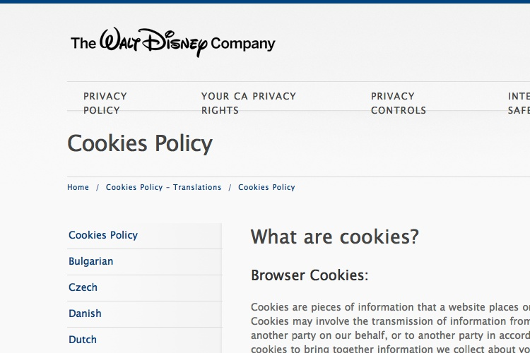 Screenshot of Disney Cookies Policy Privacy